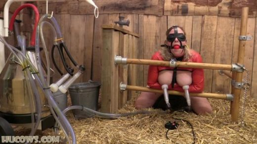 06 27 hucow 38 sybian and goat milker